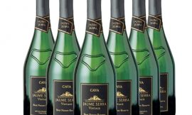 6 botellas de Cava Jaume Serra Reserva Vintage Brut Nature (6x750ml) por sólo 28,20€.