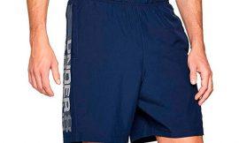 Pantalones cortos Under Armour Woven Graphic Wordmark desde sólo 12,00€.