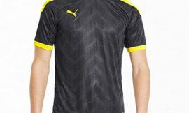 Camiseta Puma Ftbinxt Graphic Shirt para hombre desde sólo 8,48€.